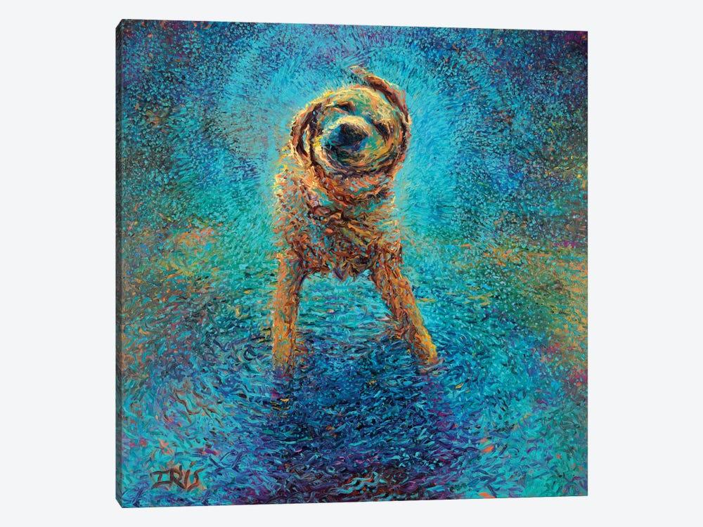 Shakin' Off The Blues by Iris Scott 1-piece Canvas Art Print