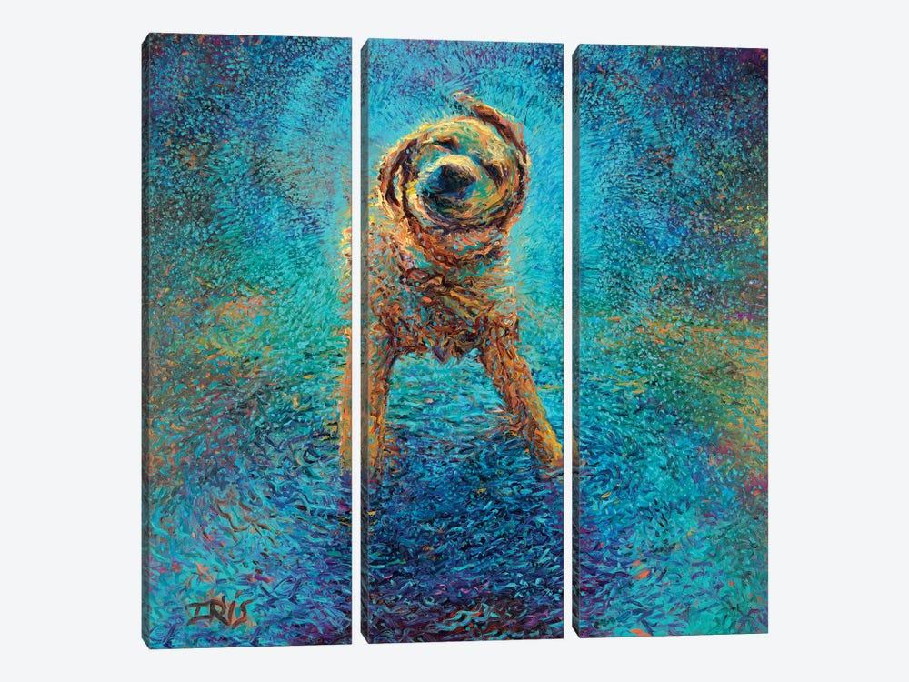 Shakin' Off The Blues by Iris Scott 3-piece Canvas Art Print