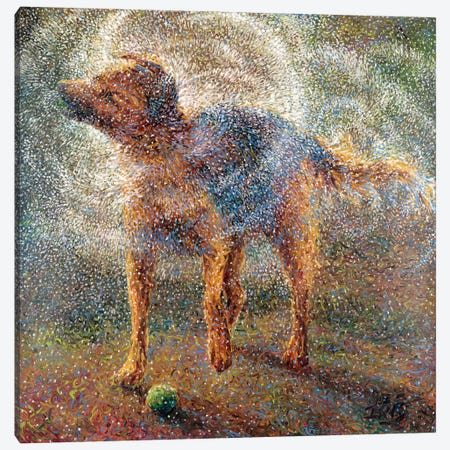 Shakin' Shepherd Canvas Print #IRS64} by Iris Scott Canvas Wall Art