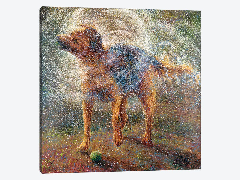 Shakin' Shepherd by Iris Scott 1-piece Canvas Art