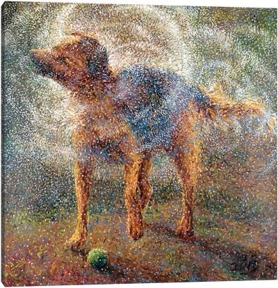 Shakin' Shepherd Canvas Art Print