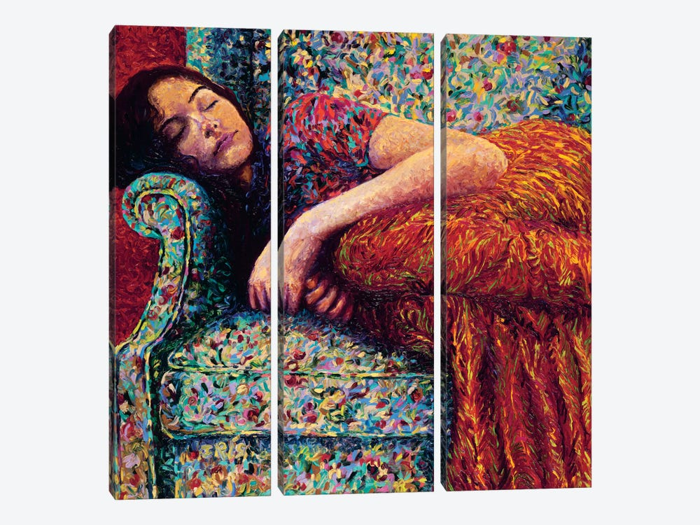 Sleepy Lee by Iris Scott 3-piece Canvas Art Print