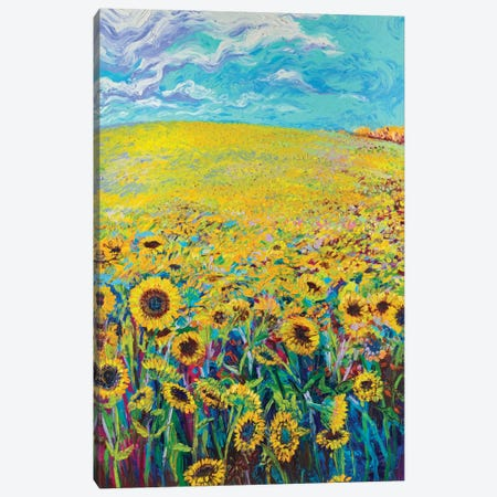 Sunflower Triptych Panel I Canvas Print #IRS74} by Iris Scott Canvas Art Print