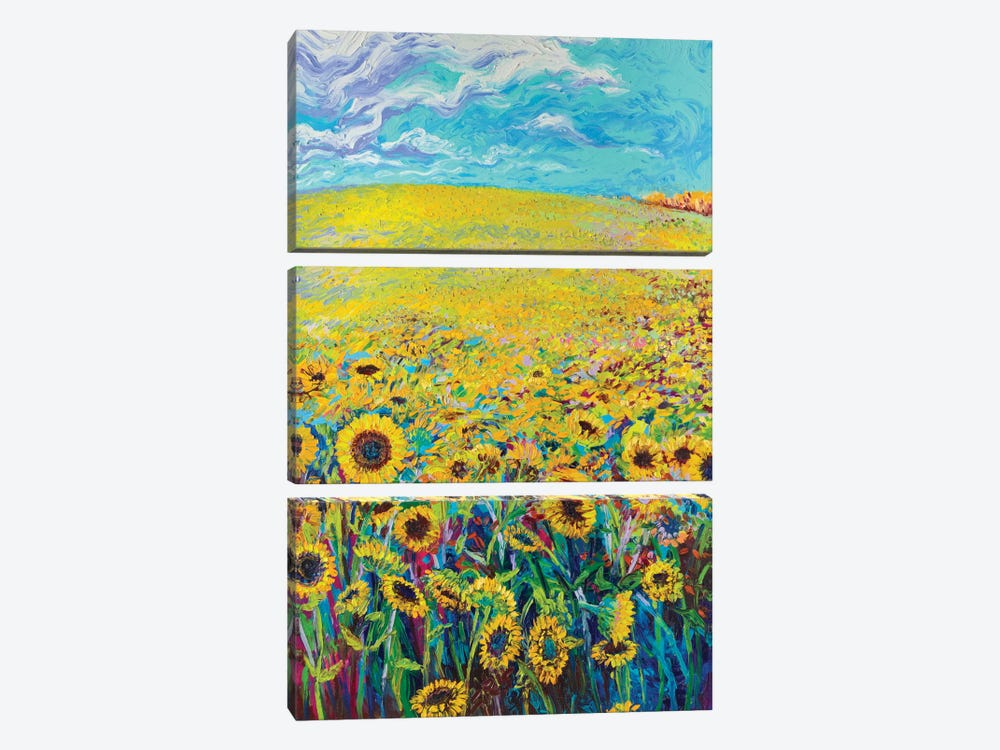 Sunflower Triptych Panel I by Iris Scott 3-piece Canvas Print