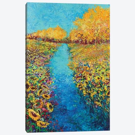 Sunflower Triptych Panel II Canvas Print #IRS75} by Iris Scott Canvas Art Print