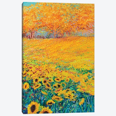 Sunflower Triptych Panel III Canvas Print #IRS76} by Iris Scott Canvas Art Print