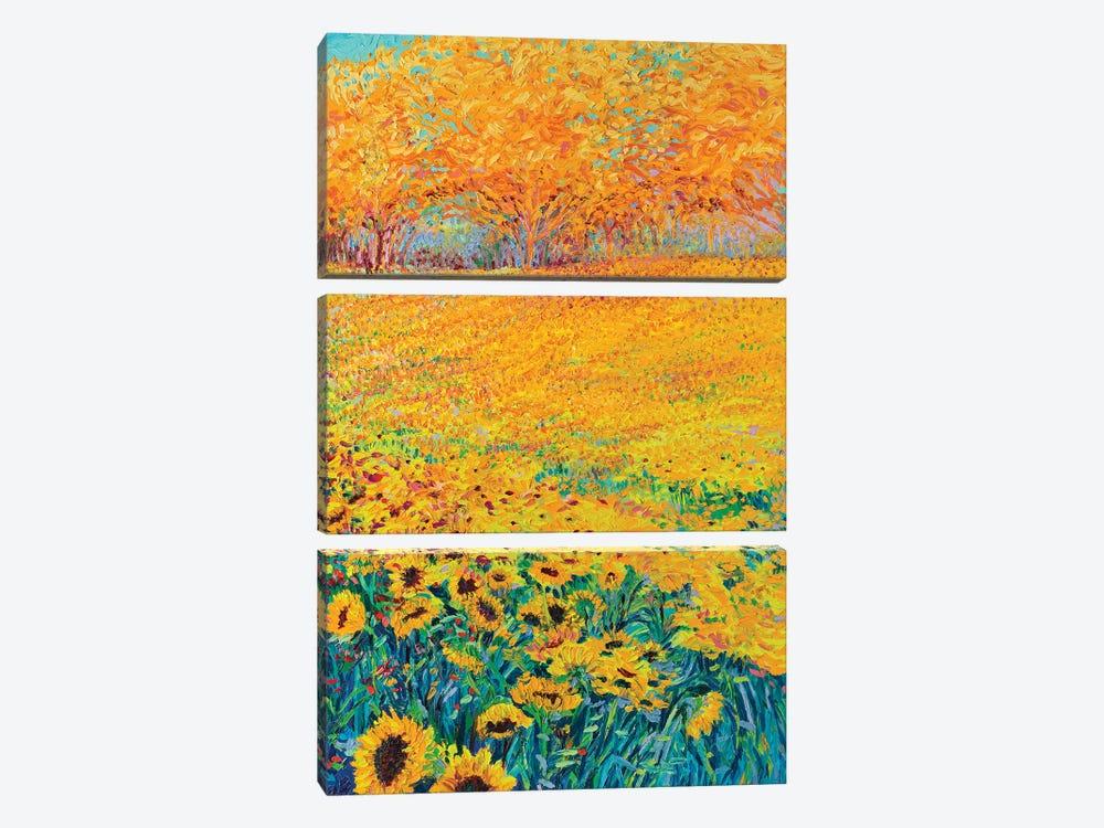 Sunflower Triptych Panel III by Iris Scott 3-piece Canvas Print