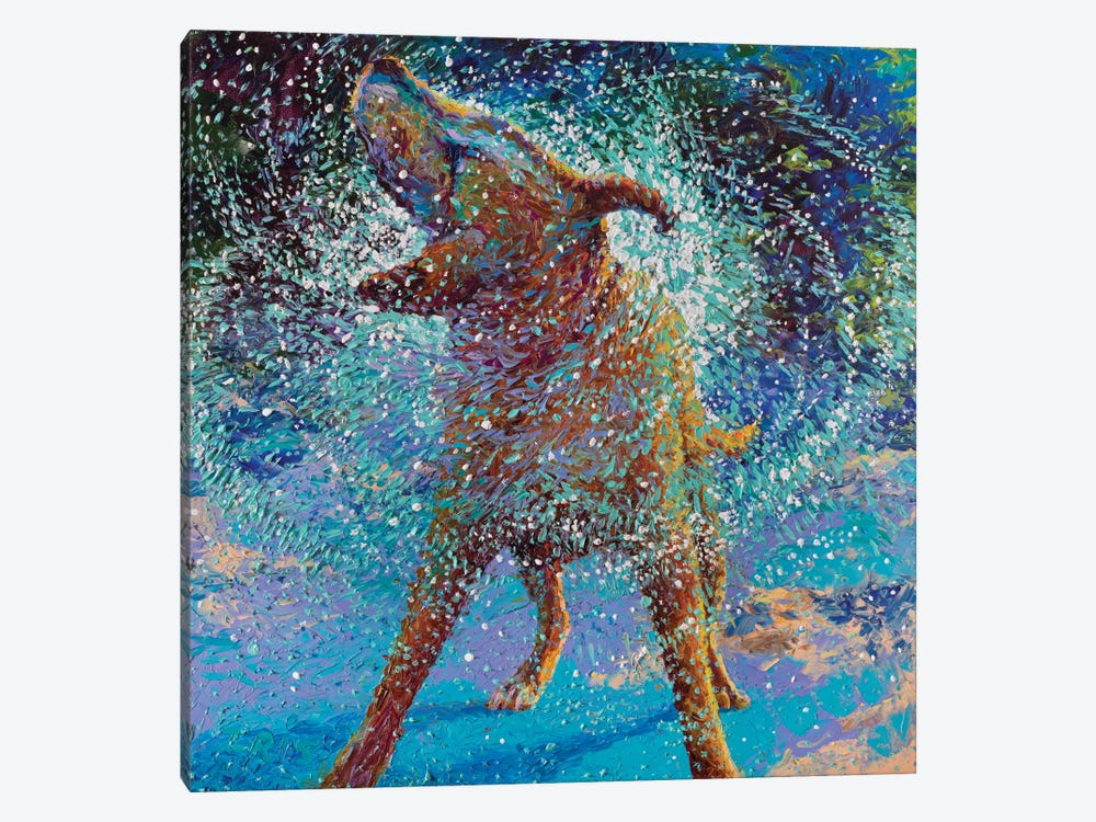 Swimmin' In Ice by Iris Scott 1-piece Canvas Artwork