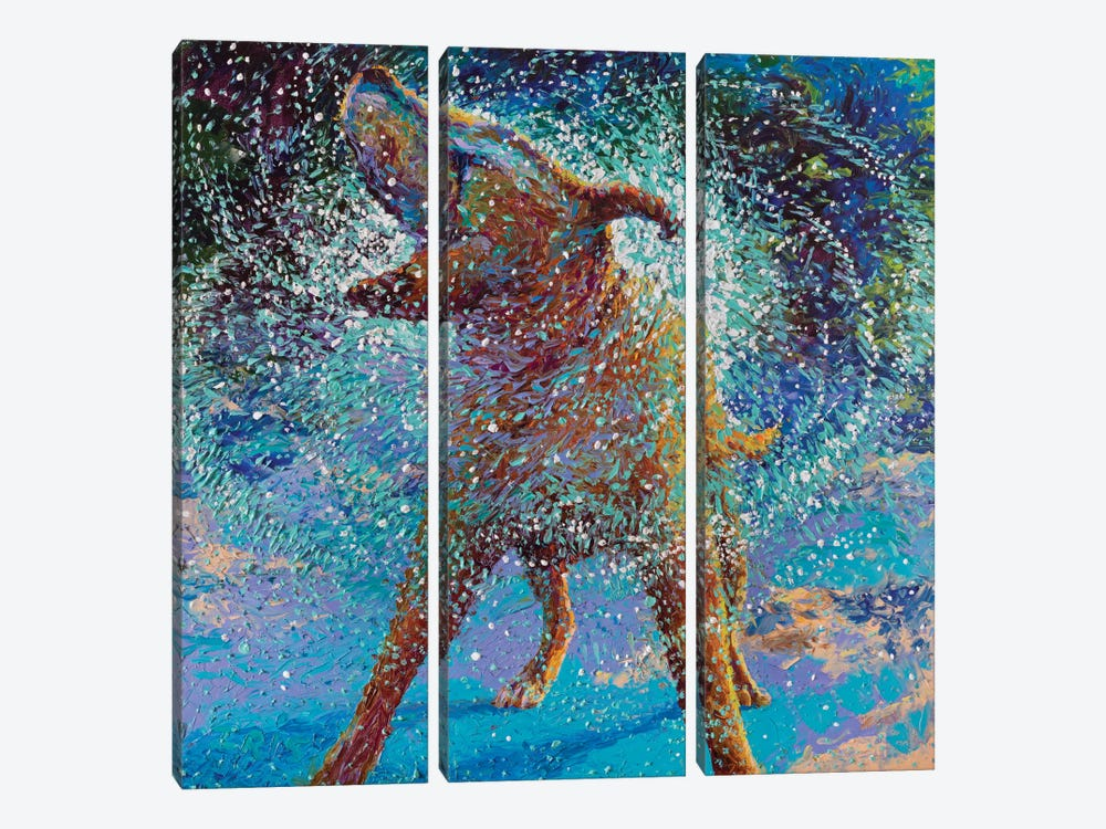 Swimmin' In Ice by Iris Scott 3-piece Canvas Wall Art