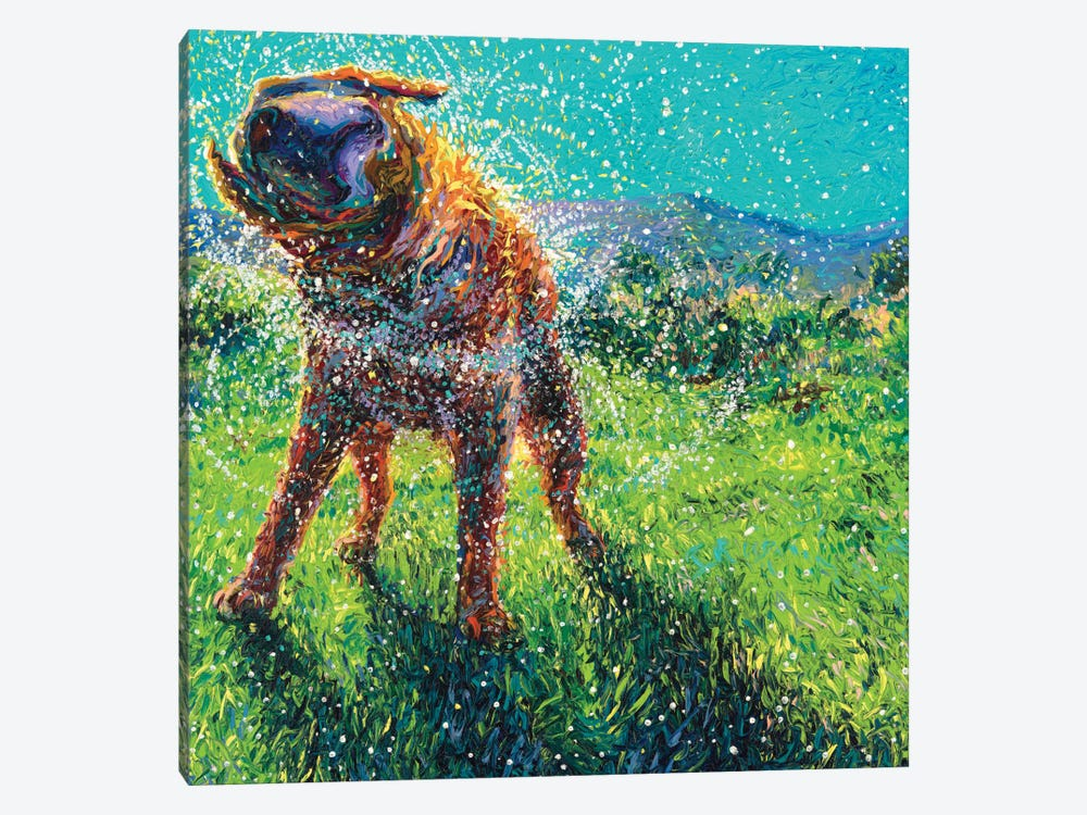 Swimmin' In The Creek by Iris Scott 1-piece Canvas Artwork