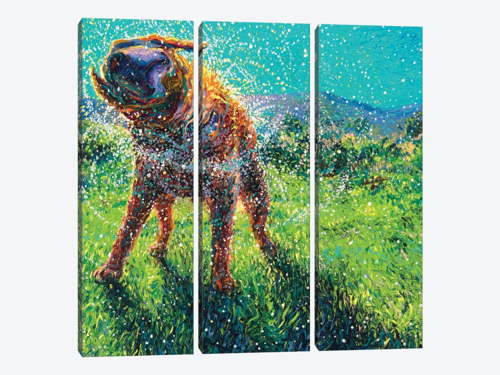 Swimmin' In The Creek by Iris Scott 3-piece Canvas Art