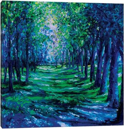 Blue Evergreens Canvas Art Print