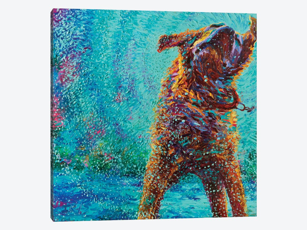 Underdog Blues by Iris Scott 1-piece Canvas Print