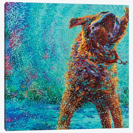 Underdog Blues Canvas Print #IRS92} by Iris Scott Canvas Art