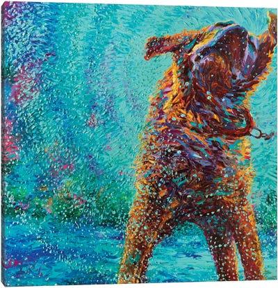 Underdog Blues Canvas Art Print