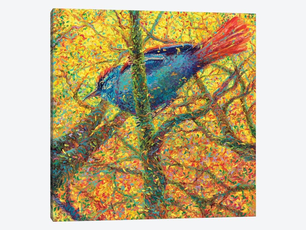 Yellow Bluebird by Iris Scott 1-piece Canvas Artwork