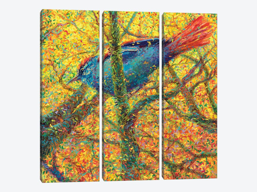 Yellow Bluebird by Iris Scott 3-piece Canvas Wall Art