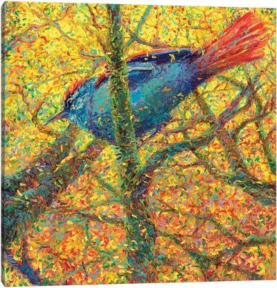 Yellow Bluebird Canvas Art Print