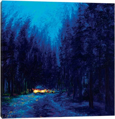 Blue Redwoods Canvas Art Print