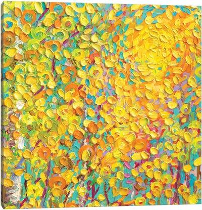 YM 099 Canvas Art Print