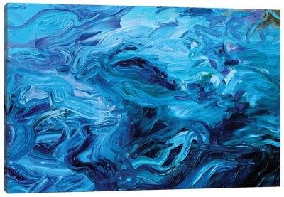 BM 017 Canvas Art Print