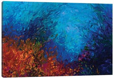 BM 001 Canvas Art Print