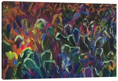 DC 035 Canvas Art Print