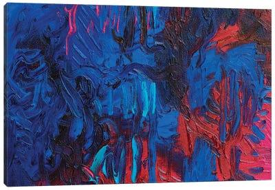 DC 043 Canvas Art Print