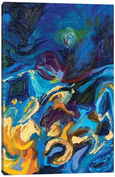 DC 051 Canvas Art Print