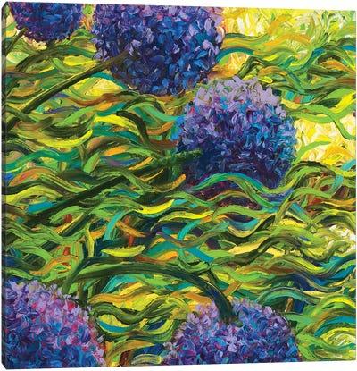GM 055 Canvas Art Print