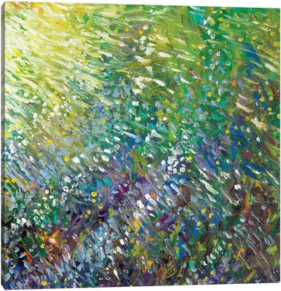 GM 062 Canvas Art Print