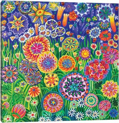 A Meadow Canvas Art Print