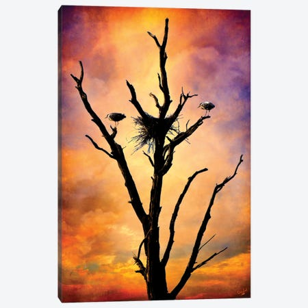 Nesting In Glory Canvas Print #ISL109} by Chris Lord Canvas Wall Art
