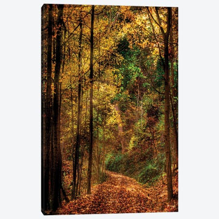 October Woods Canvas Print #ISL111} by Chris Lord Art Print