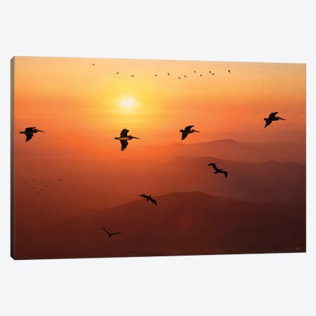 Pelican Migration Canvas Print #ISL73} by Chris Lord Canvas Artwork