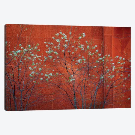 Spring In SOHO Canvas Print #ISL79} by Chris Lord Canvas Artwork