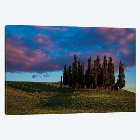 Evening In Tuscany Canvas Print #ISL9} by Chris Lord Canvas Wall Art