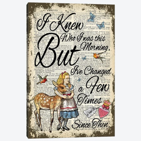 Alice In Wonderland ''I've Changed...'' Canvas Print #ITF67} by In the Frame Shop Canvas Art Print