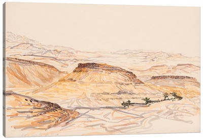 Nahal Nizana Canvas Art Print