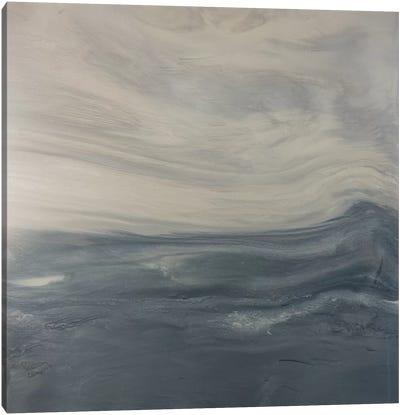 Sudden Silence Canvas Art Print