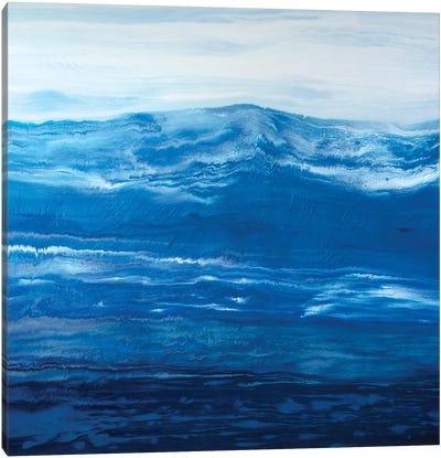 Element Of Nature Canvas Art Print