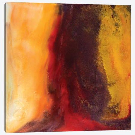 Depth Of Desire Canvas Print #ITU5} by Igor Turovskiy Canvas Artwork