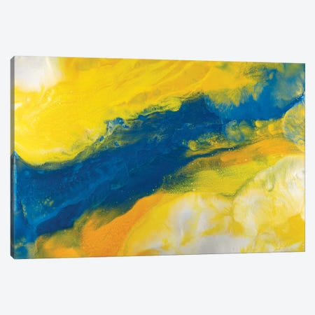 Evolving Elegance Canvas Print #ITU7} by Igor Turovskiy Canvas Art