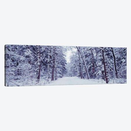 Snowy Road In The Forest Canvas Print #IVG293} by Ievgeniia Bidiuk Art Print