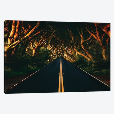 The Trail Is Along The Winding Trees Canvas Print #IVG49} by Ievgeniia Bidiuk Canvas Artwork