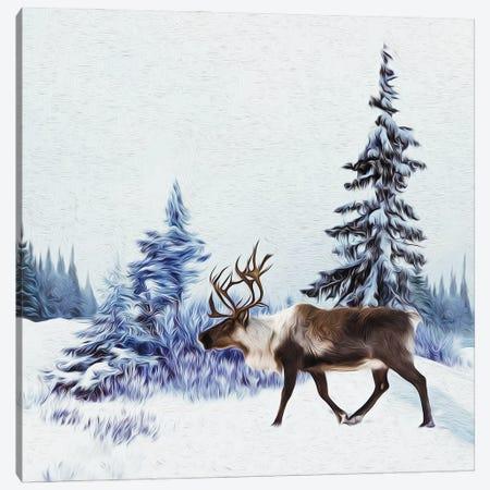 Lapland Landscape Canvas Print #IVG50} by Ievgeniia Bidiuk Canvas Art Print