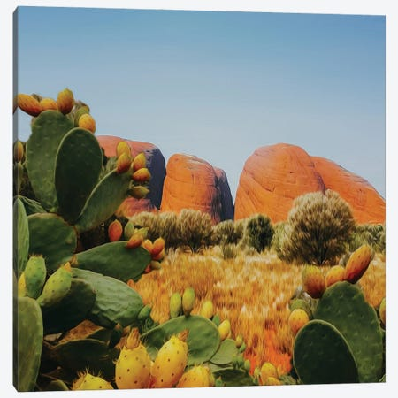 Landscape From The Valley Of Cacti Canvas Print #IVG51} by Ievgeniia Bidiuk Canvas Print
