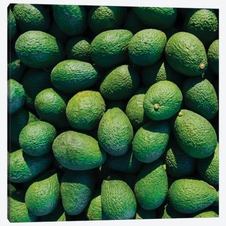Green Avocado Canvas Print #IVG59} by Ievgeniia Bidiuk Canvas Art Print