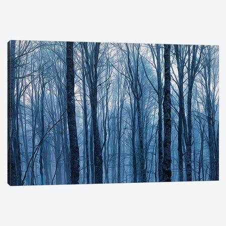 Night Branchy Winter Forest Canvas Print #IVG89} by Ievgeniia Bidiuk Canvas Artwork