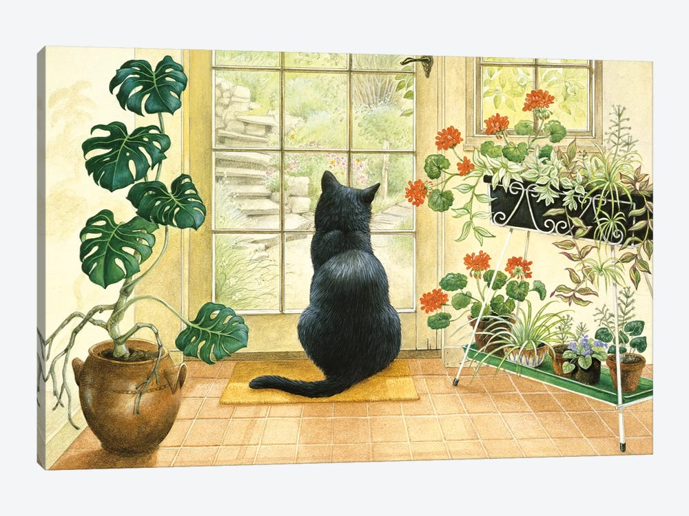 Chesterton At The Back Door by Ivory Cats 1-piece Canvas Art Print